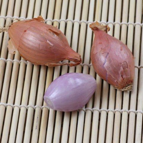 Schalotten
