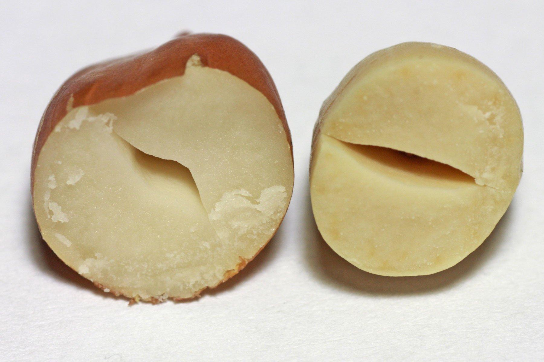 Geröstete und ungeröstete Erdnuss